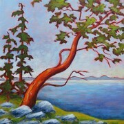 Arbutus and Friends - SOLD