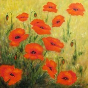 Field Poppies - SOLD