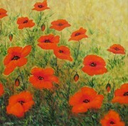 Field Poppies II - SOLD