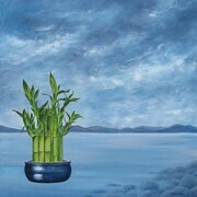 Lucky Bamboo - SOLD